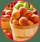 Extraits des Fruits